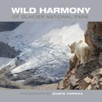Wild-Harmony_COVER-3x2_square